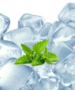 FlavourArt Arctic Winter (Aroma)